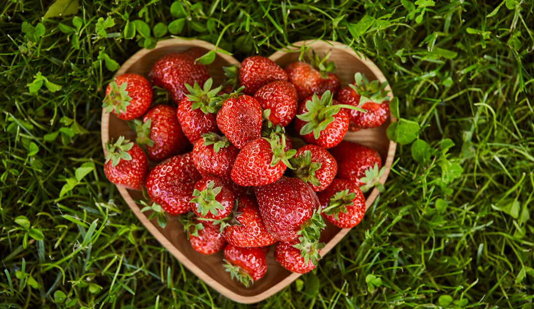 Up Your Strawberry Savvy: Selection Tips, Storage Hacks, and Recipes to Try